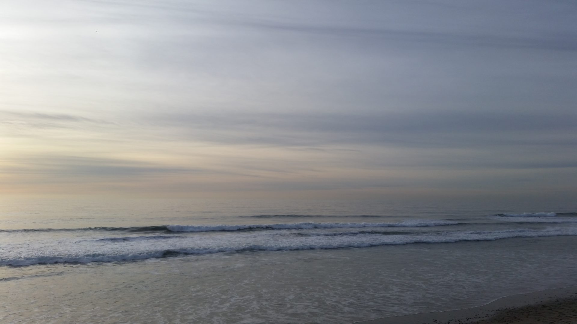 Another Gray Horizon