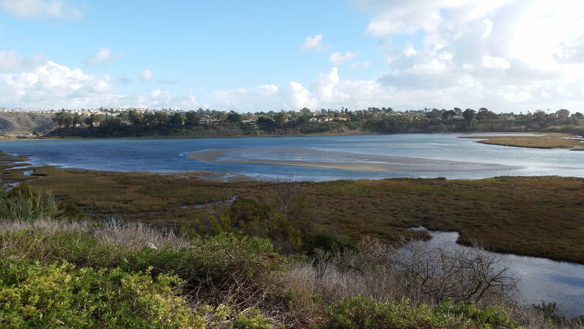 Lagoon at Low Tide