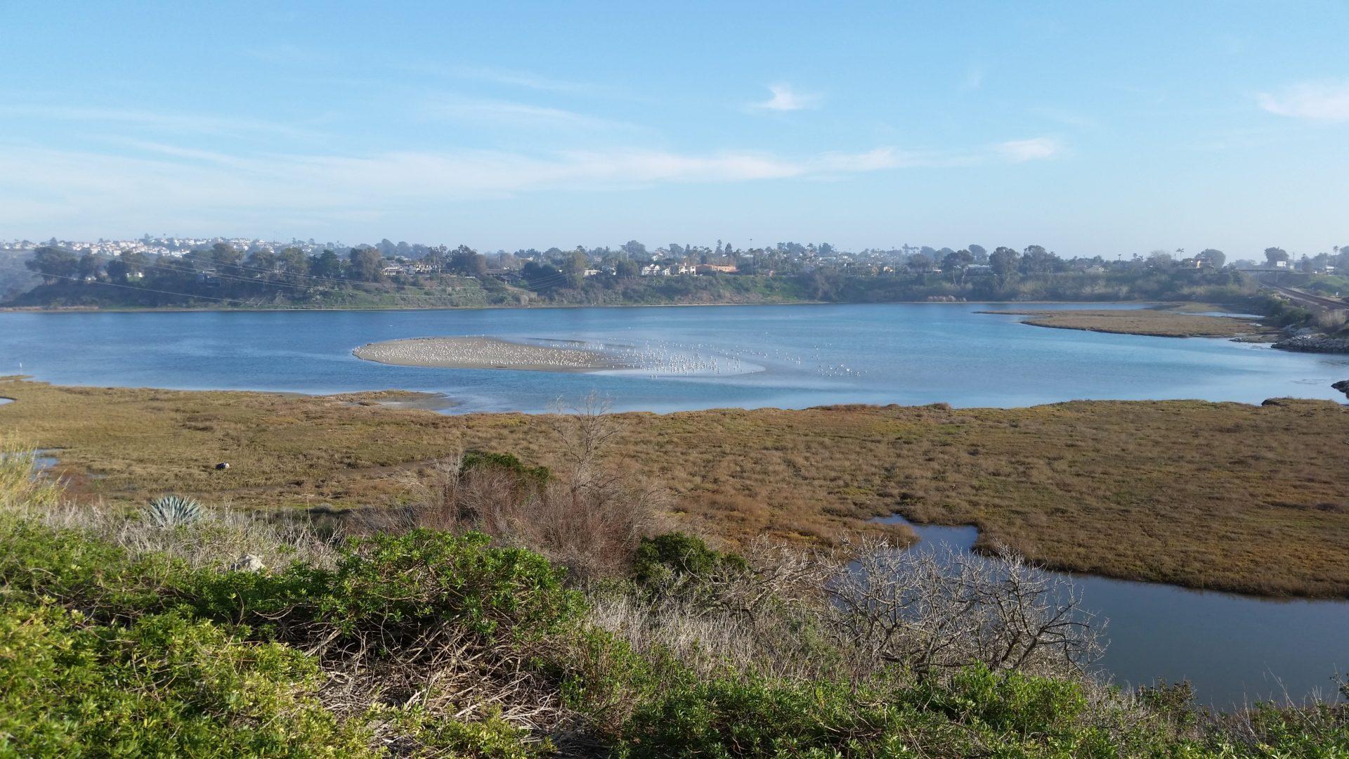 Lagoon Again