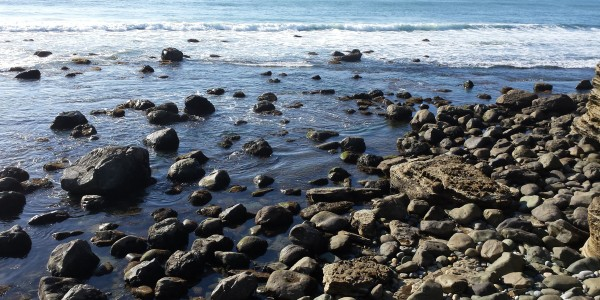 Pt. Loma low tide