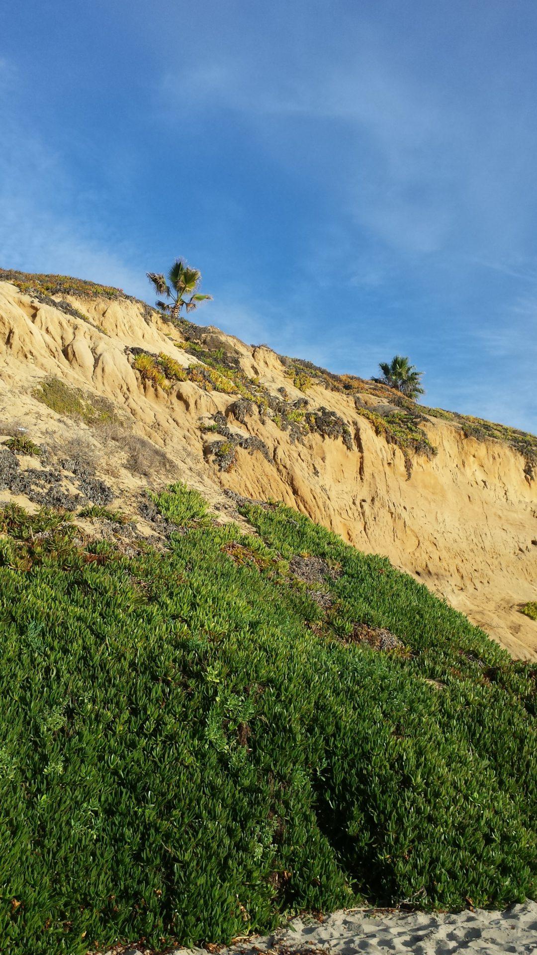 Our Cliffs