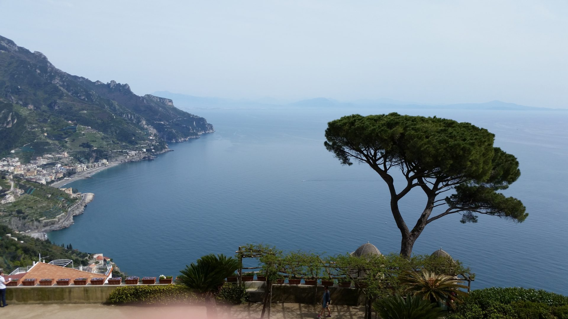 Amalfi with Tree